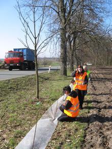 Ochránci přírody spolu s dobrovolníky staví zábrany na ochranu obojživelníků